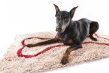 Soggy Doggy Doormat Extra Large 36-inch x 60-inch Beige  Microfiber Chenille Doormat for Wet Dog Paws