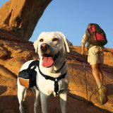 Kurgo 00028 Wander Pack Dog Backpack