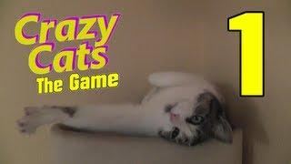 Let's Play Crazy Cats The Game - Part 1 - Eine kleine Demoversion