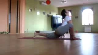 Doing Yoga With Cat!! ★ funny cats, cute cats, cute kitten, crazy cats, hilarious cats