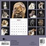 Shake (Dogs) Wall Calendar (2016)