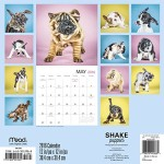 Shake: Puppies Wall Calendar (2016)