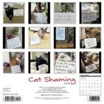 Cat Shaming 2018 Wall Calendar