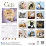 Cat Calendar - Cute Animals Wall Calendar - Calendars 2017 - 2018 Wall Calendars - Cats 16 Month Wall Calendar by Avonside