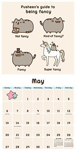 Pusheen The Cat 2018 Wall Calendar Cute Cats And Dogs